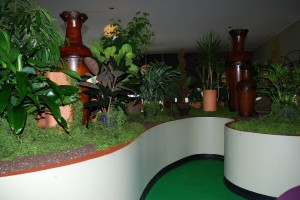 Green Plant Display