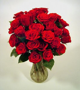 valentine_s_day_roses